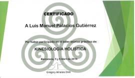 LUIS MANUEL PALACIOS GUTIERREZ (13)