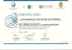 LUIS MANUEL PALACIOS GUTIERREZ (06)